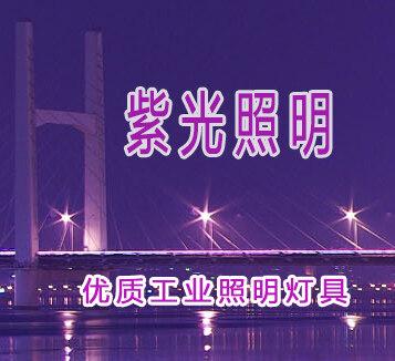 黄石紫光照明技术有限公司