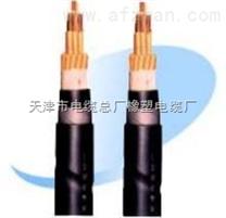 硅橡胶绝缘变频控制电缆出厂价格