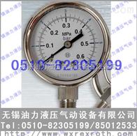 耐震压力表YN100
