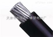 防水交聯聚乙烯絕緣電纜YS-YJV廠家直銷