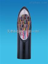 阻燃大对数电线型号 ZR-HYA ZR-HYA