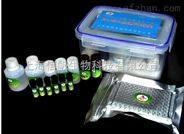 人二胺氧化酶ELISA试剂盒 专业DAO实验代测
