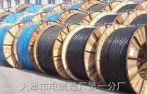 耐火电力电缆NH-VV NH-YJV