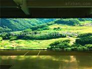 广东知名的全彩LED显示屏生产厂家