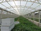 蔬菜大棚采光板//采光板生产厂家【每米价格】