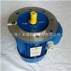 ms132M1-6ms132M1-6(4KW)中研紫光电机