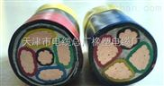 阻燃铜芯塑力电缆-VV 3*6+1*4