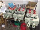 水泥厂粉尘防爆照明(动力)配电箱BXMD-DIP