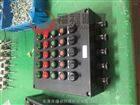 BXK8030-A10D10K5G防爆防腐控制箱