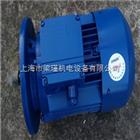 MS7124紫光MS7124三相异步电机,中研技术有限公司,清华紫光电机报价