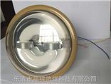 SBD1102-YQL40W防爆免维护无极灯