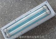 BHY-2x28Wq嵌入式防爆洁净双管荧光灯