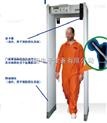 启亚SMD601进口机场安检门
