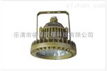 FLD510防爆免维护LED照明灯(IIC)