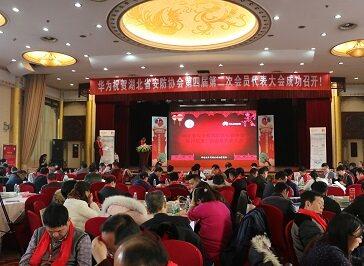 湖北省安全技术防范行业协会第四届第二次会员代表大会成功召开
