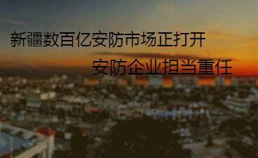 新疆数百亿安防市场正打开 安防企业担当重任