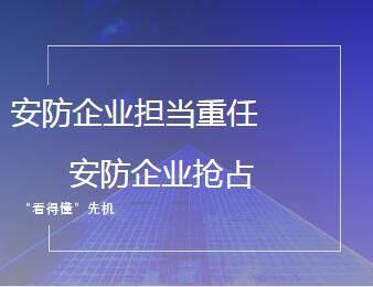 """""""中国智造""""声明海内外 安防企业抢占""""看得懂""""先机"""