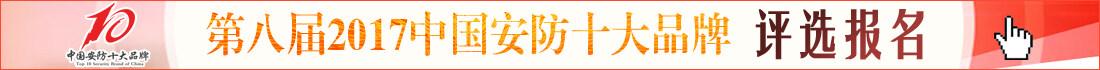 第八届2017中国安防十大品牌评选