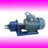 S型输油泵|CB-B泵头带电机