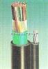 全塑HYAC通信电缆